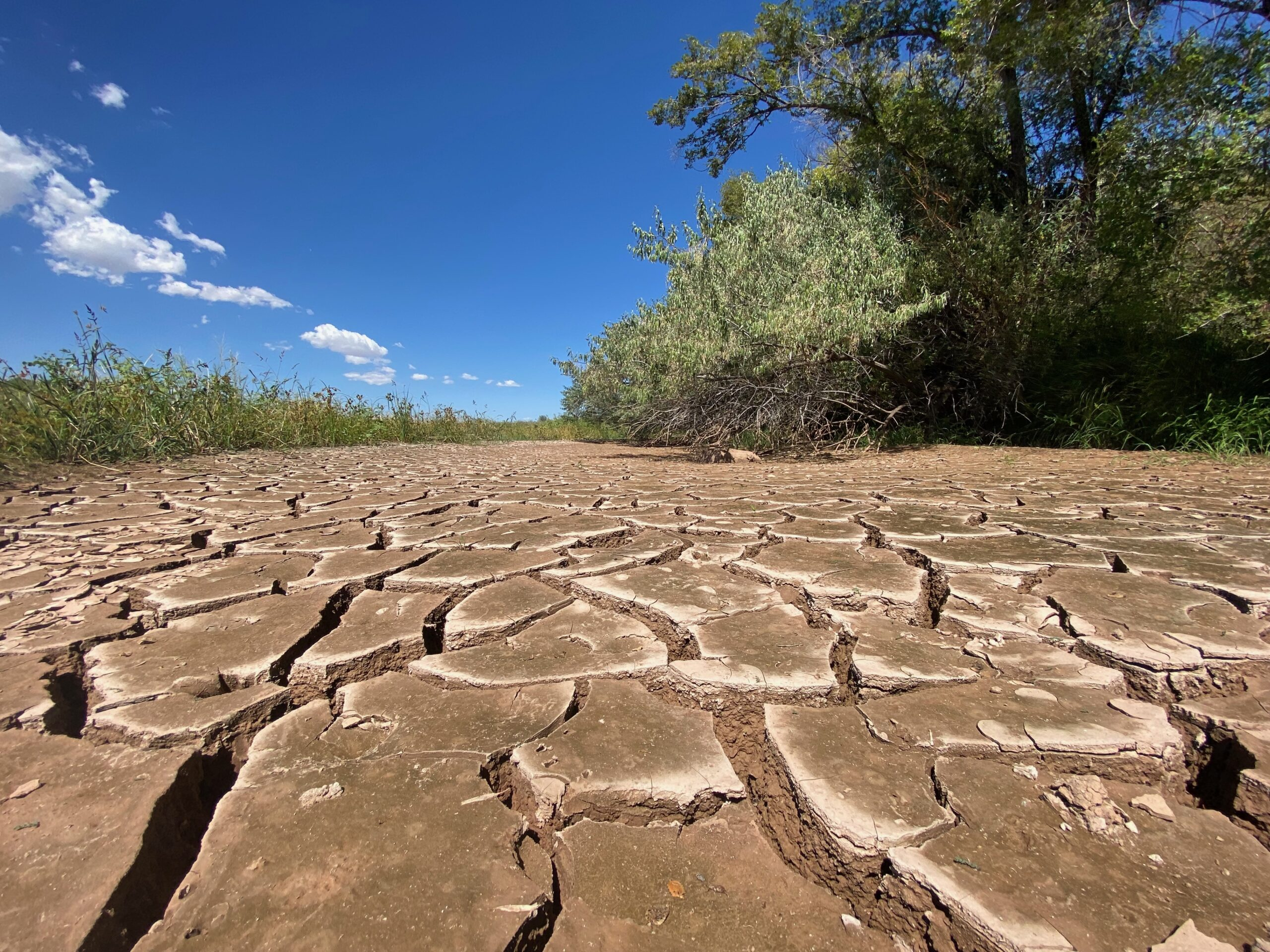 Memory of a River: In another hot year, we fail the Rio Grande
