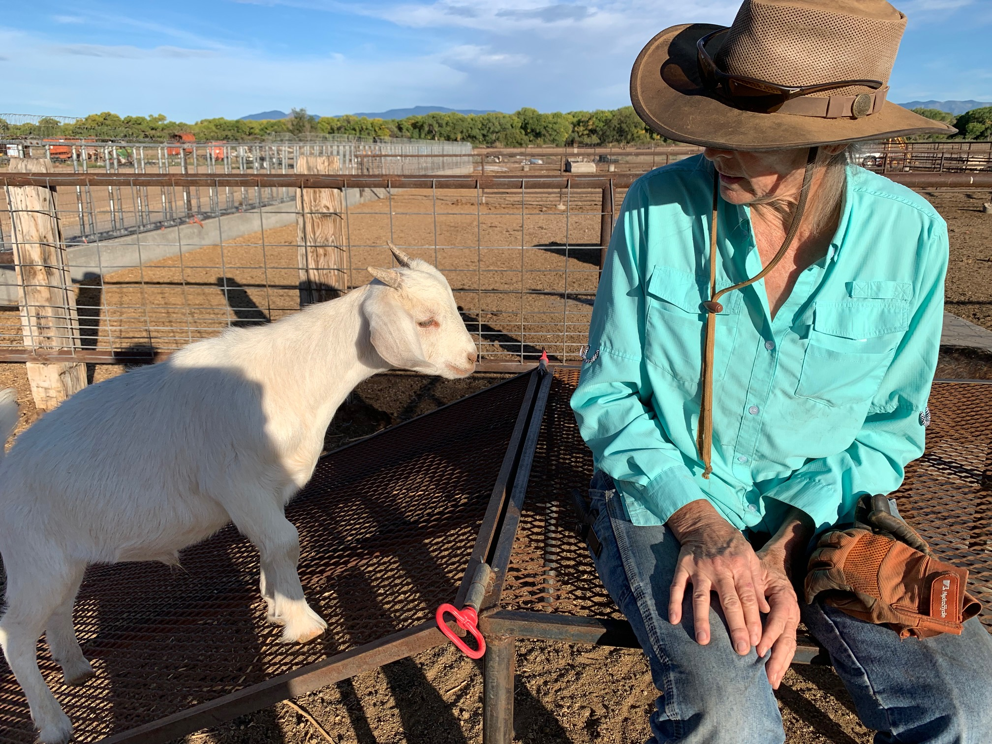'It's my livelihood': Drought and restrictions could kill farms along Rio Grande, farmers say